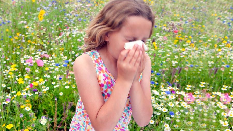 آلرژی کودکان و مواد غذایی